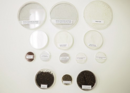 Fortified food samples